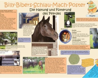Horse poster Billy Beaver smart Mach-poster the feeding and husbandry of the horse