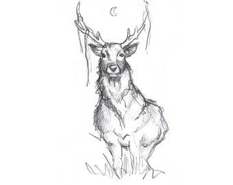 Stag Sketch Print A5