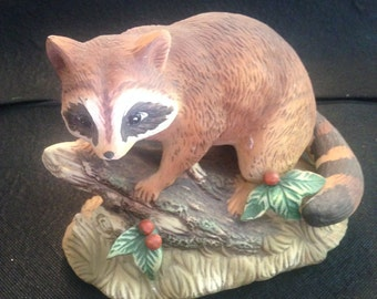 Raccoon - Master Piece Collection