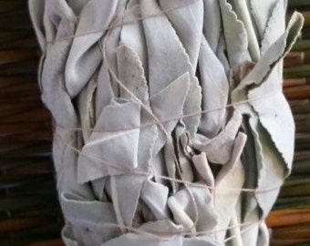 White Sage for smudging