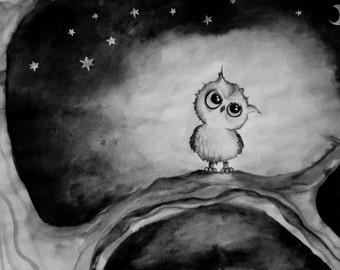 Little Owlie