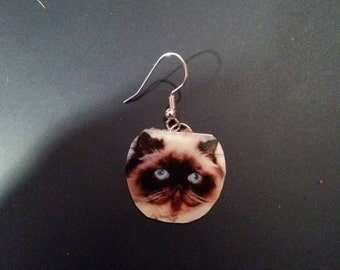 Beautiful hand made Persian cat earrings