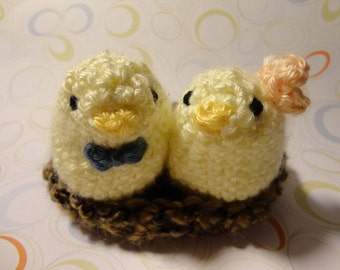 Bird couple crochet