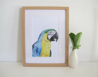 Watercolour Macaw Print, Blue, Yellow, Green, Watercolour Animals