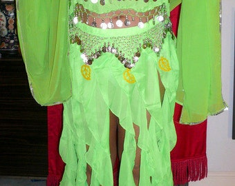 Tribal fairy tinkerbell costume