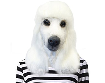 White Standard Poodle Dog Costume Face Mask - Kennel Club