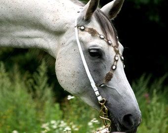 Handmade Bridle White Baroque