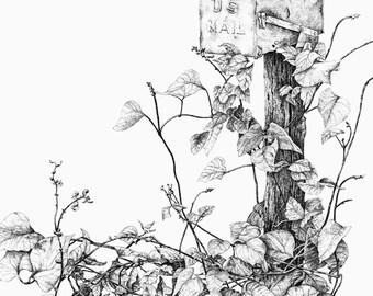 Pen & ink landscape MAIL BOX