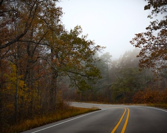 Into the Mystic, Road Photography, Fall Photography, Fog Photography