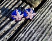 Star Fish Pair, Lampwork Bead Pair, Simply Lampwork by Nancy Gant, SRA G55