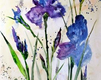 Blue Iris Original Watercolor