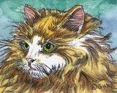 ACEO Long hair Yellow & White Cat Original Watercolor Ink Miniature Art