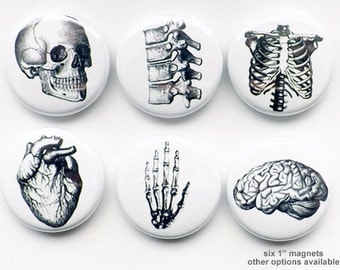 """Shop """"anatomical heart"""" in Home & Living"""