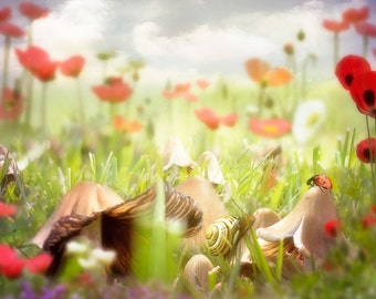 Fairy toadstool background for digital scrapbooking and photo projects