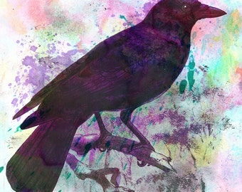 """Poe's Raven - 11"""" x 14"""" Nature Inspired Digital Watercolor & Pencil Open Edition Fine Art Print by Kenneth Rougeau"""