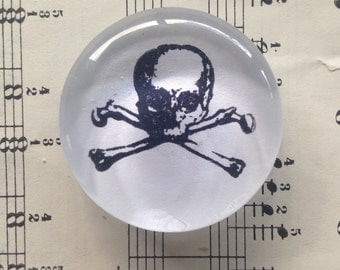 Skully - Glass Magnet, Office, Kitchen