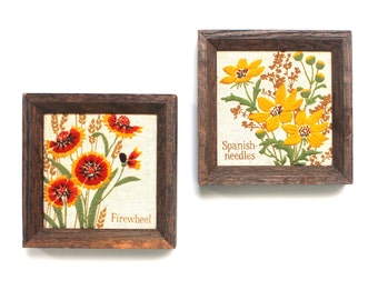 Set of 2 Framed Floral Embroideries Firewheel & Spanish Needles