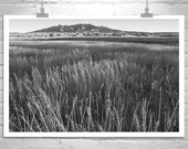Fine Art Photography, Tucson, Arizona, Ranch, Prairie, Western Landscape, Black and White, Landscape Photography, Huachuca, Sierra Vista
