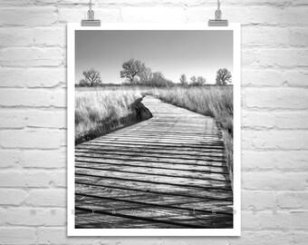Surreal Art, Black and White Photography, Winter Photo, Trails, Winter Art, Cottonwood Tree, Tree Art, Arivaca, Art for Living Room