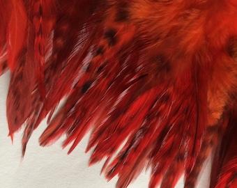 COUTURE Chinchilla Saddle /  Flamenco Red    /  2053