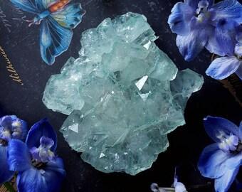 Green Apophyllite Crystal - Mint Green Apophyllite Flower Cluster - Medium Size Green Apophyllite Crystal Cluster - Pastel Green Apophyllite