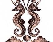 Sookie Earrings - ruby and sterling silver drop earrings