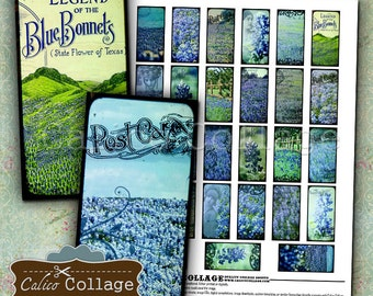 Printable, Bluebonnets, Digital Collage Sheet, Domino Collage Sheet, Texas Bluebonnets, Digital Dominoes, Printable Images, CalicoCollage