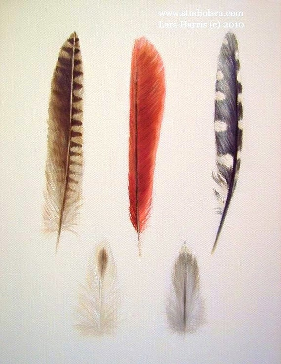 CUSTOM Build Your Own Feather Painting in OIL by LARA 8x10