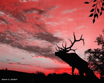 Elk Art, Southwestern Skies, Red Sky, Native American Totem Animal, Black Silhouette Wall Hanging, Wildlife Home Decor, Giclee Print, 8 x 10