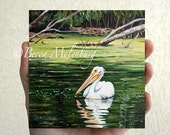 bird painting American White Pelican original oil miniature nature wildlife fine art