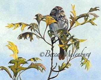 bird song sparrow Original oil painting wildlife nature leaves leaf tree fine art