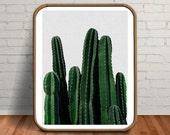 Plant Print, Cactus Prints, Cactus Wall Art, Cactus Art, Desert Print, Plants, Best Friend, Green Art, Green Print, Best Friend Gift, Prints