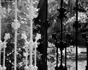 Historic Savannah Black and White Photography,,Secret Garden Gate Art Print, Southern Charm Home Decor, Gothic Goth,