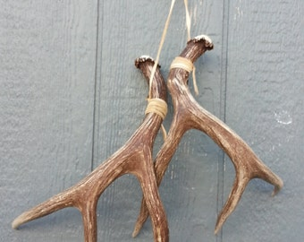 Rattling Horns Wallhanging- Lovely Matched Pair of Mule Deer Shed Antlers Set Lot No. 24779Y