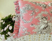 Straight from Paris lovely Toile de Jouy fabric pillow handpicked for you
