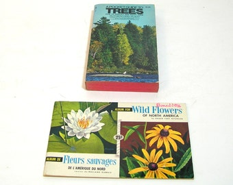 Pocket Guide To Trees And Wild Flowers Of North America, Vintage Nature Books