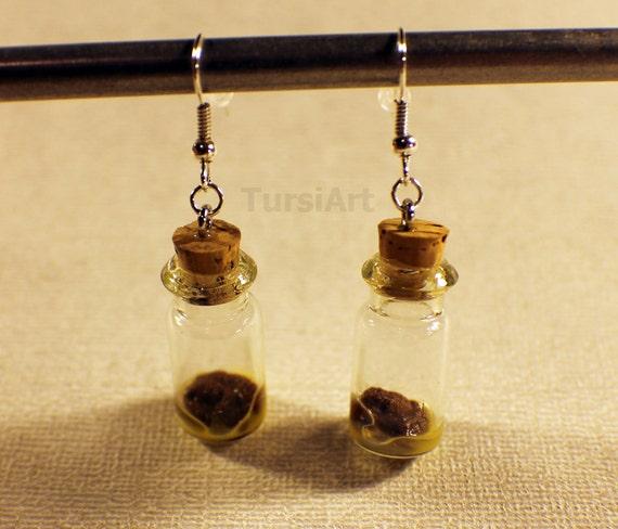 Stool Sample Realistic Crappy Earrings Poop in a Jar Fecal
