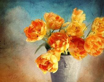 Tulip Photograph, Orange Tulips, Spring Flowers, Orange and Blue, Colorful Country Decor, Farmhouse Flower Print, 8x10