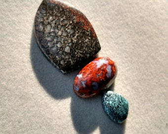Lost in Time - Triple set of cabochons with dinosaur bone, Brenda plume agate, and New Lander Variscite, turquoise