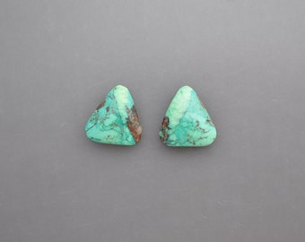 Turquoise Pair