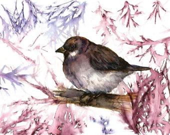 "Italian  Art  Original Watercolor ""Sparrowt"" Italy Animal Woodland   Italian Landscape & Scenic"