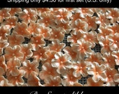 Gum Paste Light Orange/Peach 25 edible gumpaste blossoms