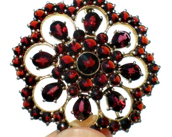 Red Garnet & 830 Silver Brooch in Stunning Flower Design with a Gold Wash - Vintage Jewelry