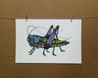 Watercolor/Ink-Animal-Insects-Grasshopper-Other Lubber