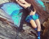 MidDreamers Ooak Butterfly fairy Wren