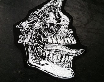 Anatomic Skull Patch with Tongue