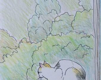 Cat original drawing - P013July2016