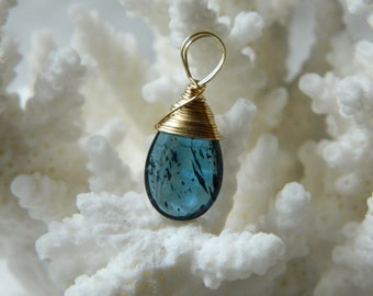 14k gold filled wire wrapped focal blue AAA Moss Royal Kyanite smooth briolette pendant 21mm x 9.5mm including hoop
