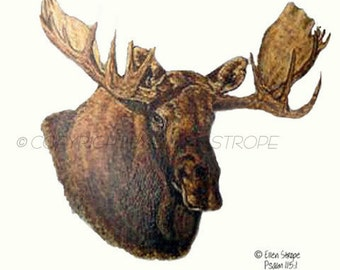 CARDS, Moose, Blank Cards, Bull Moose, Moose decor, Cabin decor, Lodge decor, Ellen Strope