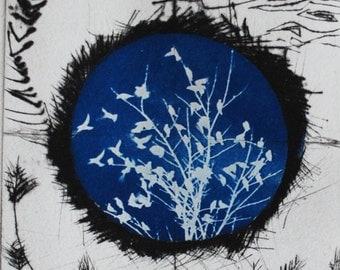 cyanotype print, original art, bird, cosmic, ooak, one of a kind, small blue art, planet Ro